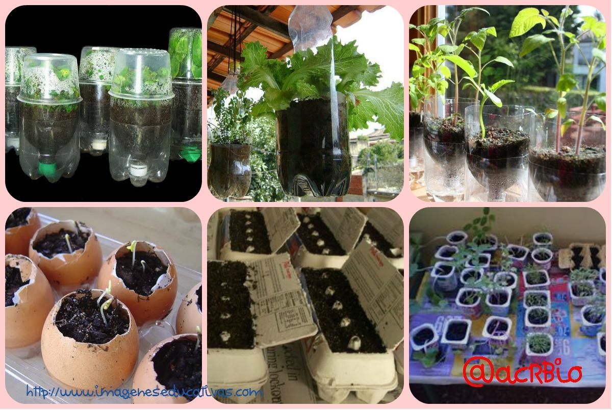 Huerto escolar botellas plastico y otros materiales for Materiales para un vivero