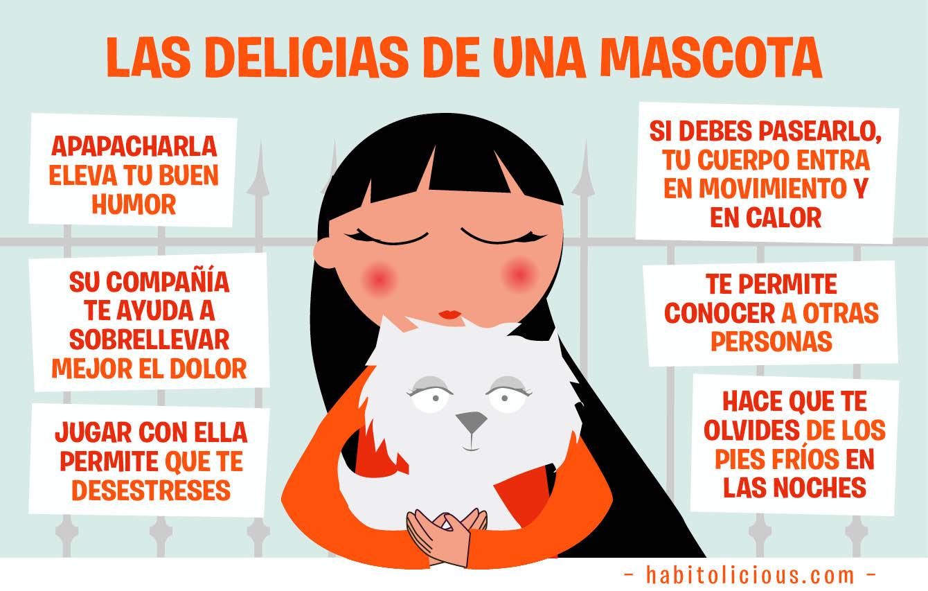 Beneficios de tener una mascota en casa imagenes educativas - La casa de la mascota ...