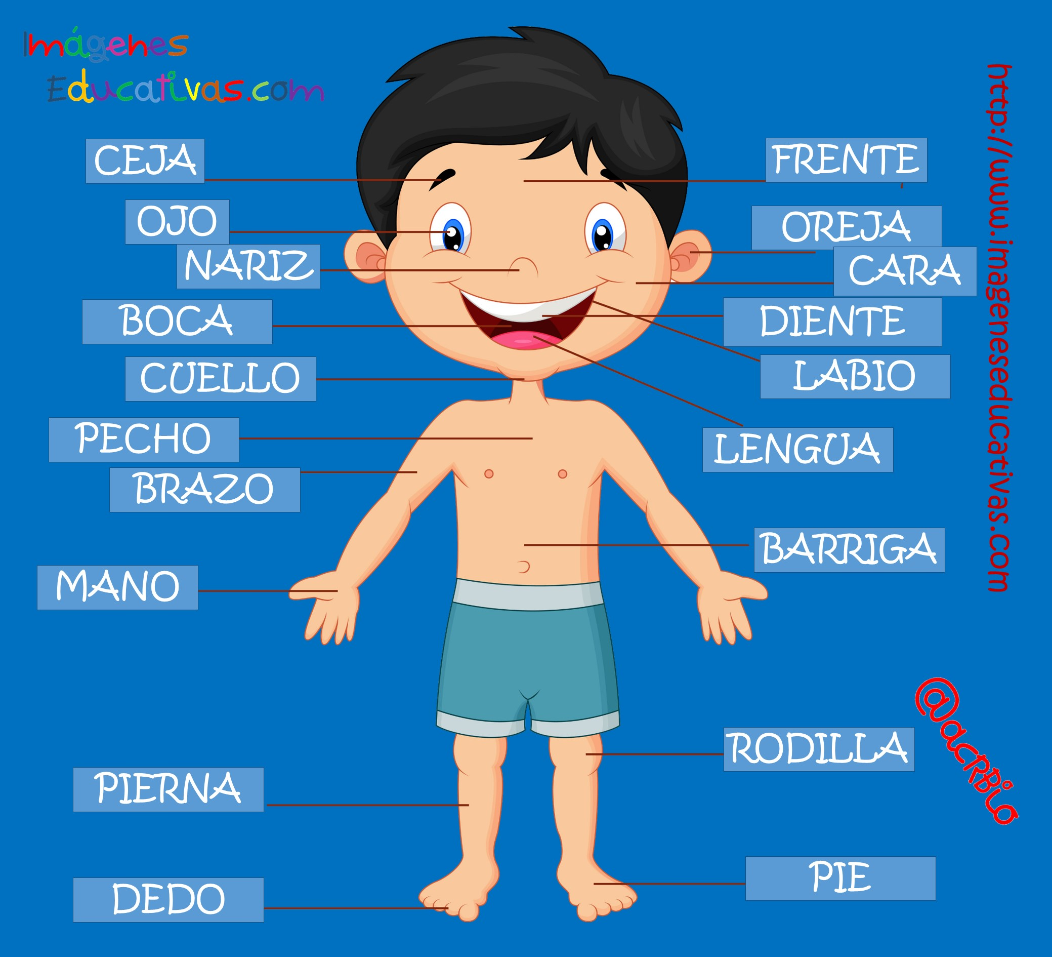 Картинка человека на испанском