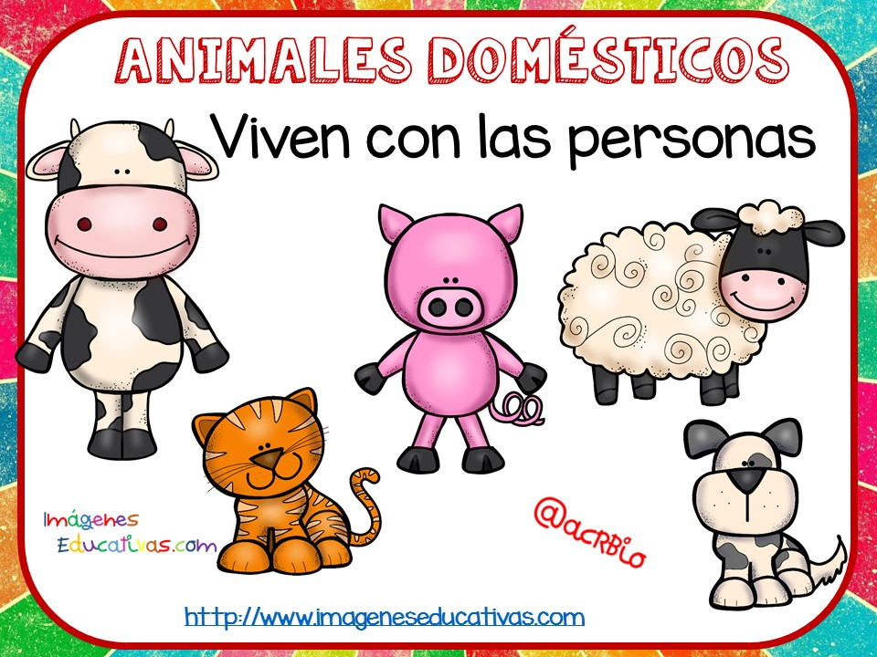 Tipos De Animales Claseficaci N 4 Imagenes Educativas