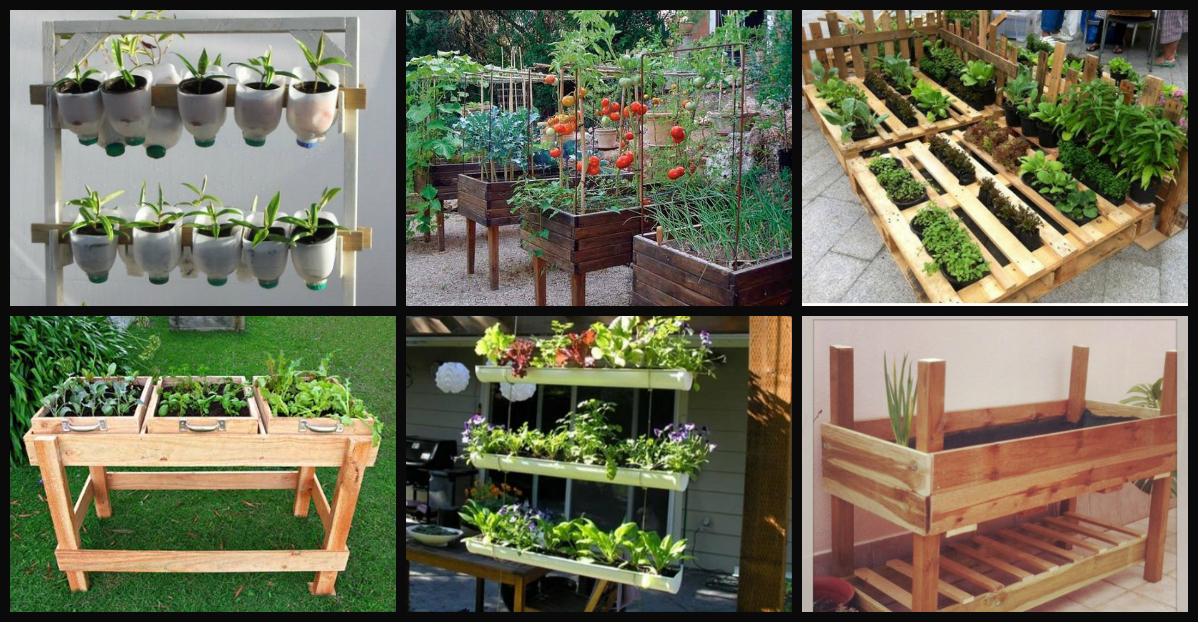 Nuevas ideas para fabricar huertos escolares con for Que plantas se siembran en un huerto
